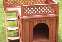 Pet-friendly backyard ideas