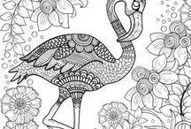 Colouring Pages For Adults