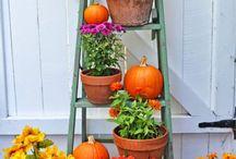 seasonal outdoor decorating