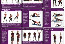 Exercícios com elásticos