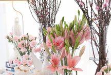 Festa decoracao Clássica japa cerejeira