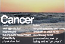 Cancers / by Meghan Rossiter