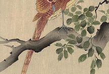 La nature représentée dans l'art - Nature and wildlife in art.