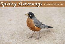 Seasonal Getaways / by Ontario Family Travel North of Toronto