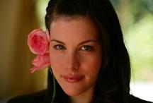 Rose Liv Tyler ® Meibacus