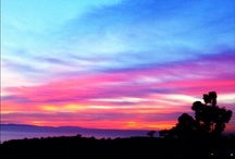 Southern California / by Rasta Taco