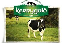 LEAP: Dairy Milk, Cheese, Yogurt, Butter