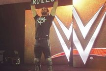 Seth Rollins Wrestling Spots Stuff to buy
