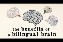 Bilingualism   Bilingüismo