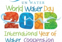 World Water Day 2013 / by bloggersunite