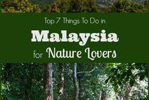 Malaysia Travel   Essential Travel Tips to Kuala Lumpur and Beyond / Essential Travel Tips to #Kuala Lumpur #Ipoh #Johor #perak #sarawak #sabah #malaysiatrulyasia #penang #george town #streetart #borneo