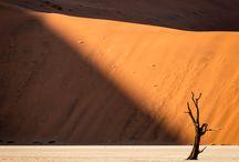 desert-sivatag