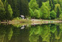 5 lacuri naturale pe care trebuie să le vezi / România este cunoscută pentru peisajele sale surprinzătoare şi pentru diversitatea formelor de relief. Pierdute printre toate aceste minuni se ascund cele mai frumoase lacuri naturale. Cu toate că ţara noastră este pavată de un număr foarte mare de ochiuri de apă, câteva dintre ele sunt cu siguranţă de neratat pentru orice turist român... şi poate reuşim să aducem şi străini să le vadă!?