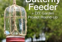 DIY butterfly feeder