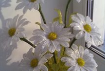 Mostacilla Flores