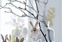 Easter: Where's the bunny?