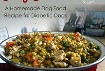 Diabetic dog food
