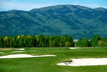 Golf Packages / by Moose Creek Ranch