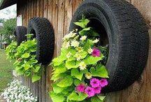 Dicas Úteis - meio ambiente / Aqui vão dicas úteis e bem sacadas, para o beneficio do meio ambiente...