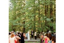 Sonoma County Weddings