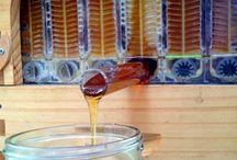 Homesteading ~ Beekeeping