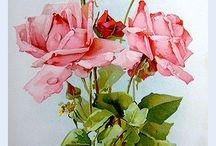 Flowers / Cottage garden, soft colours, David Austin English roses, sweet beauty.