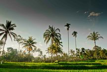 Indonesia Java Travel