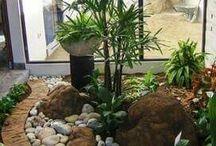 jardines y plantas ...