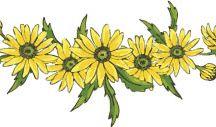 Nyomtatható virágok