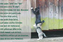Gedichte und sprüche