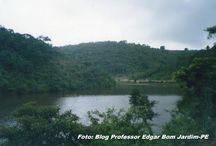 Nascente do Rio Tracunhaém