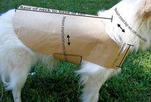 Costura perros