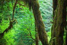 Seattle Oregon Trip