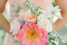 fresh cut / fresh cut flowers bouquets floristry gardens blooming femininity cheerful lively   / by Lauren Parnell