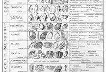 Science teaching - geology