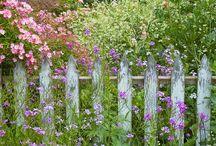 Gardens / by Jerri Jarvis