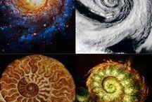 AQA 2015 Spirals Art / AQA GCSE Art Exam Question 2015