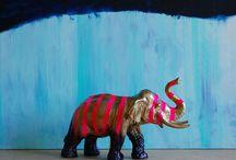 Elephants / Phoont Never forgets