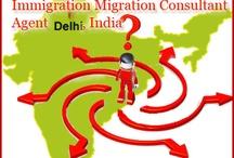 Migration Consultant Agent