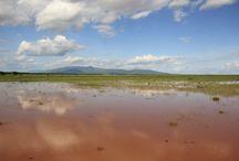 Parque Nacional Manyara