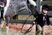 She loves horses! / by Tammy McCutchen