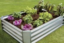 garden beds raised