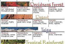 Geo Biomi
