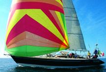 Arawak Sailing Club / Arawak Sailing Club è un'azienda da trent'anni impegnata nel settore nautico che offre una vasta serie di servizi di altissima qualità, occupandosi in particolare di crociere in barca a vela, scuola vela, scuola nautica per l'ottenimento delle patenti nautiche, noleggio e locazione imbarcazioni in tutto il mondo.
