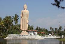Sri Lanka / Rondreizen