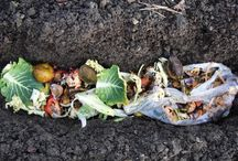 Compost / by Produce to the People Tasmania