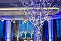 Beautiful Venues / Venues