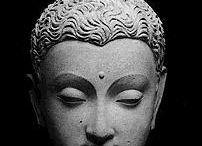 Buddha  / by Shenoa Garvey