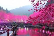Landschaften, Asiens
