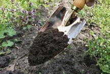 W ogrodzie / Narzędzia ogrodnicze na swoim miejscu: w ogródku, na grządce, między rabatami, w dłoni, w ziemi, w czasie pracy i odpoczynku...
